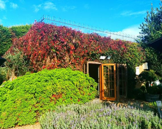 Mudbrick Wine Tasting Room New Zealand
