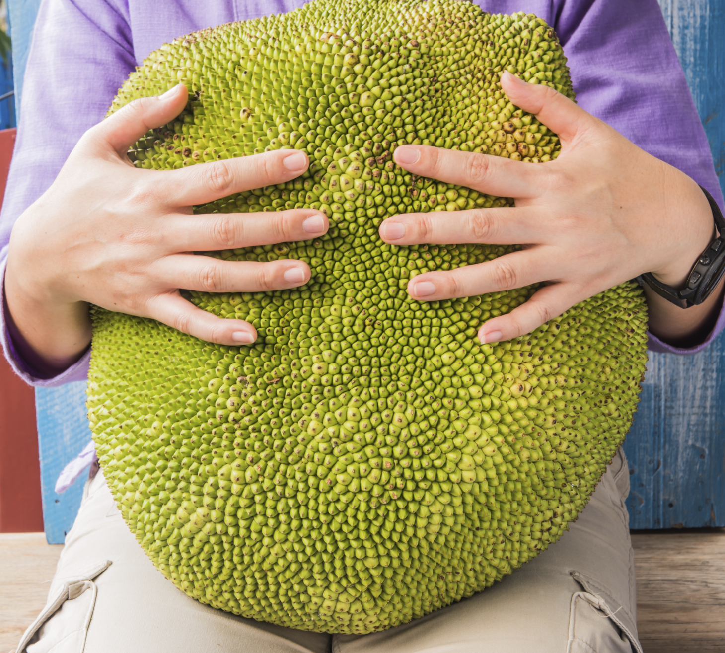 Image result for JAckFruit and person