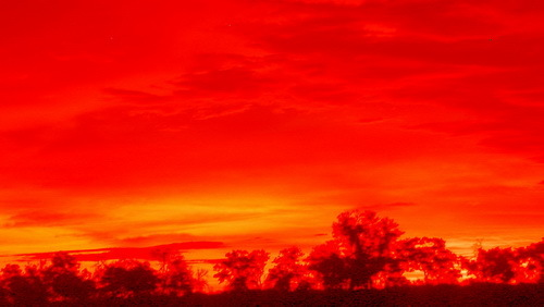2016-01-19-1453241612-5628432-heatwaveDSCN9309Africanheatwaveversion_resize.jpg