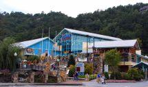 Ripley's Aquarium Gatlinburg Tennessee