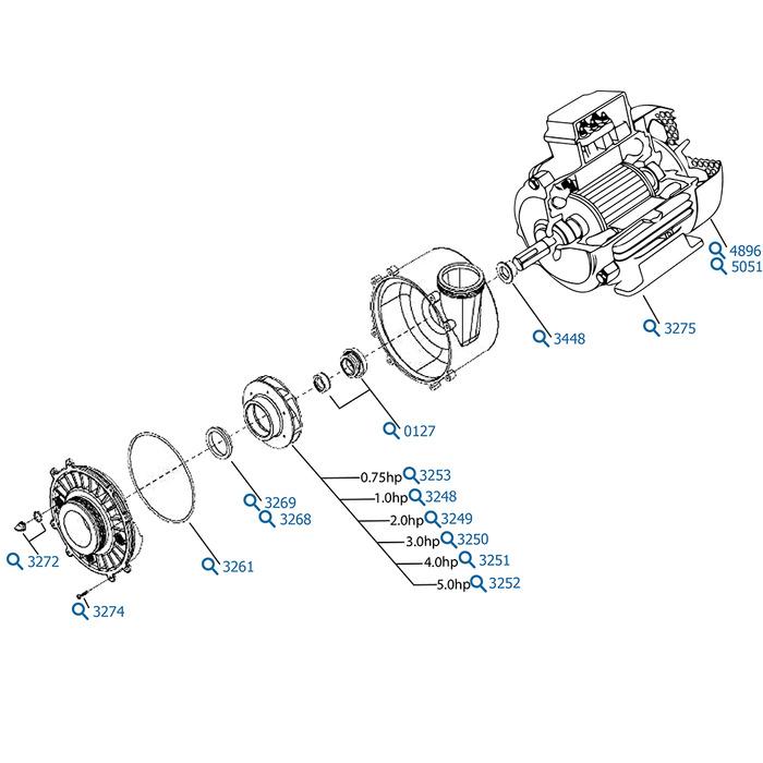 Waterway Spa Pumps Diagram, Waterway, Free Engine Image
