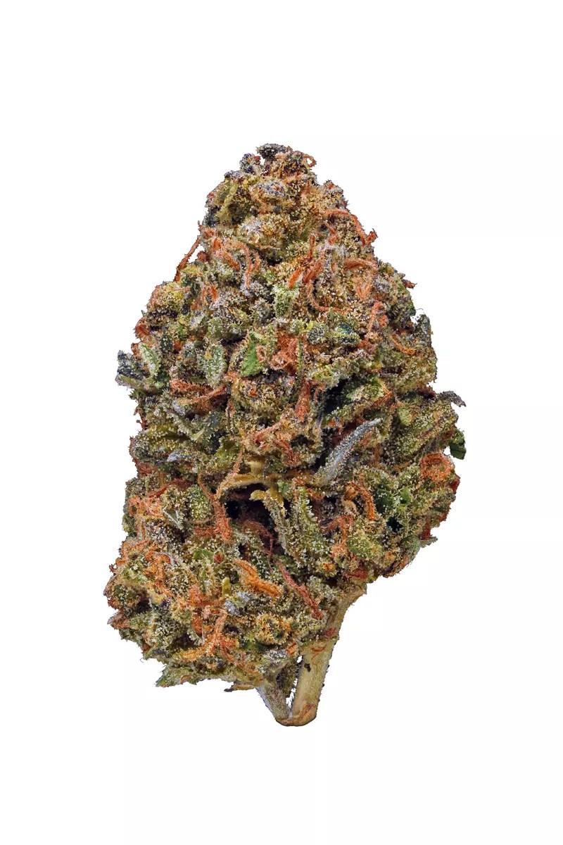 Cherry Pie Kush - Hybrid Cannabis Strain