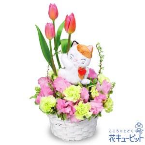 三毛猫のチューリップアレンジメント(ピンク)