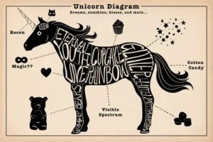 Unicorn Anatomy Diagram #2 Canvas Art Print by 5by5collective | iCanvas
