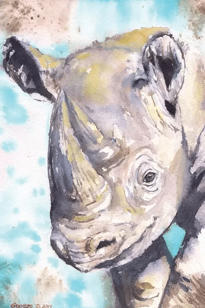 happy baby rhino art