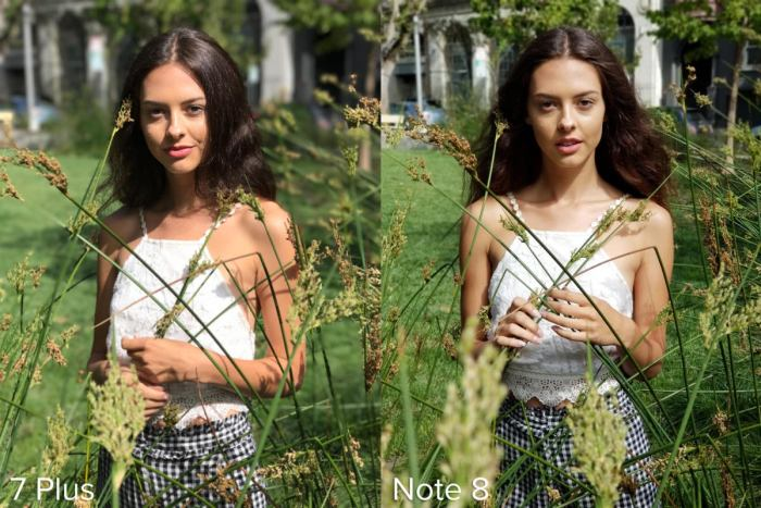 Apple iPhone 7 Plus Portrait Mode vs Samsung Galaxy Note 8 Live Focus example 3
