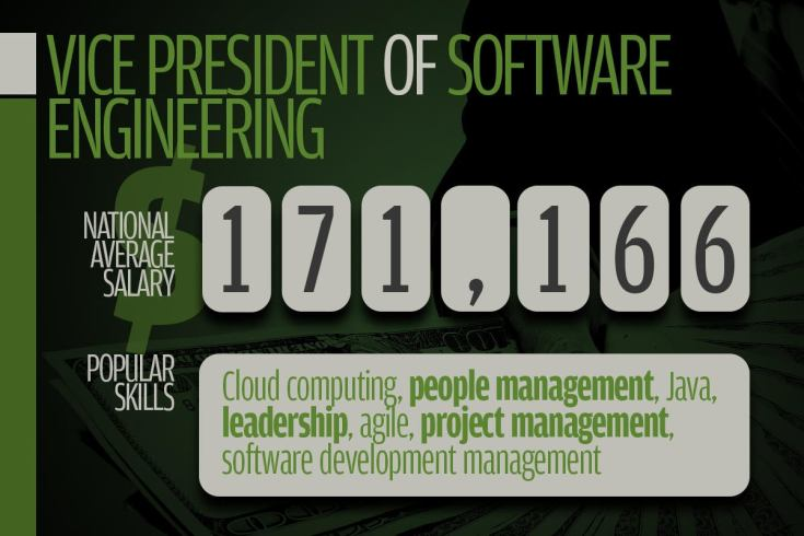 13 vice president of software engineering