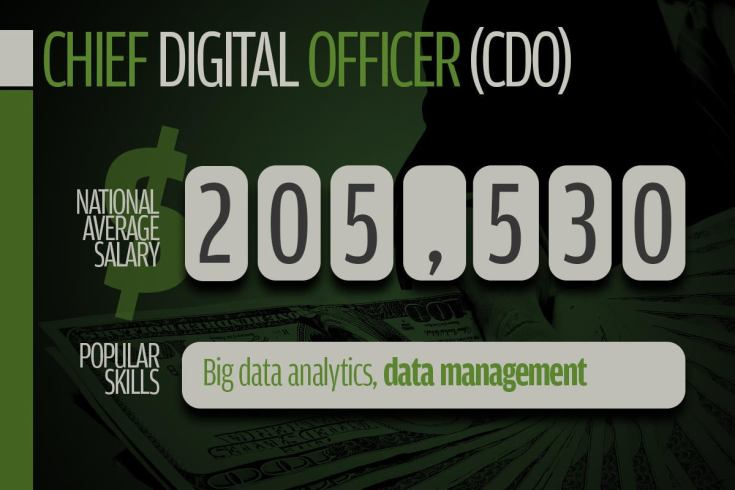 6 chief digital officer