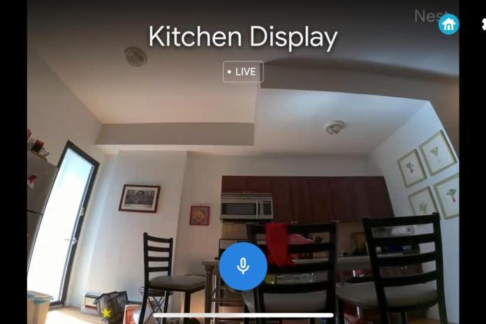 google nest hub max nest camera.jpeg