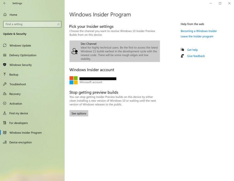Windows 10 içeriden öğrenen geliştirici kanalı Windows içeriden öğrenen