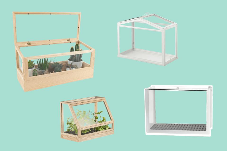 8 of the best indoor greenhouses bbc