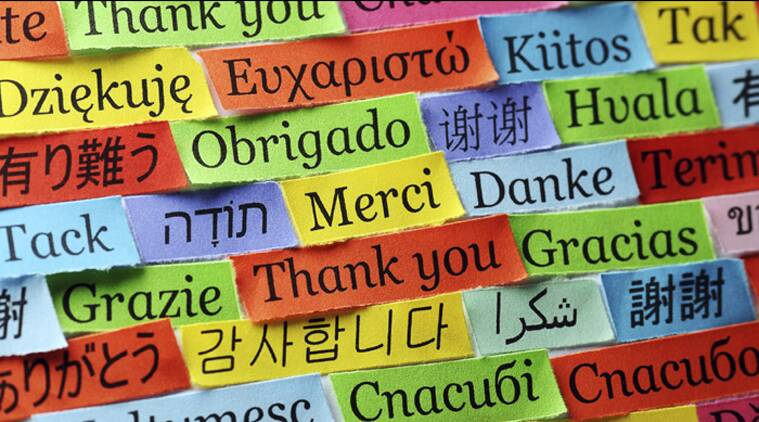 Image result for languages and the brain