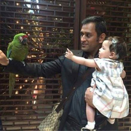 Shikhar Dhawan Hd Wallpaper Photos Ms Dhoni Daughter Ziva S Adorable Moment Clicked