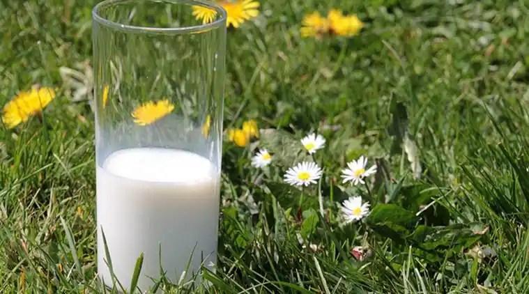Fettarme Milch, Milchmilch, Milch, Vollmilch für Kinder, Lebensstilnachrichten, Gesundheit Nachrichten, späteste Nachrichten, indischer Eil