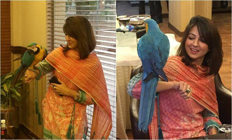 PAkistan, cafe macaw, cafe macaw islamabad, Bahria Enclave islamabad, unusual restaurant