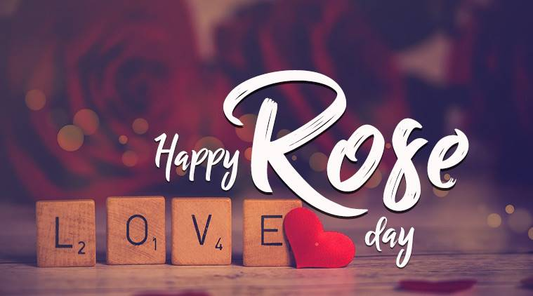 Happy Rose Day 2018: Wishes, Best Quotes, Images, Photos, Shayris, SMS, Facebook Status and WhatsApp Messages