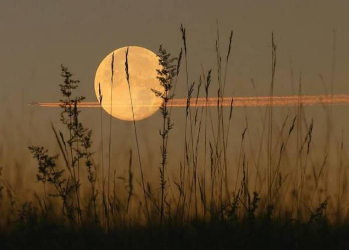 harvest moon, what is harvest moon, friday the 13th, friday 13, september 13 harvest moon