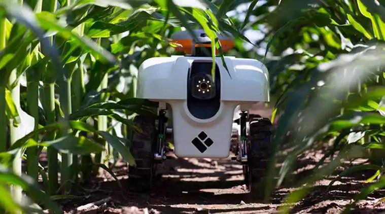 robots, Growing Presence on the Farm, Girish Chowdhary, Corteva, TerraSentia, tech news, technological news, indian express