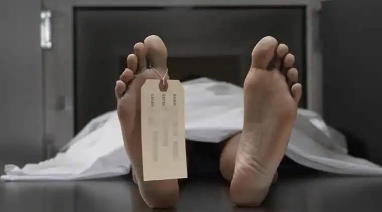militants killed, Kashmir gunbattle, Pulwama news, Jammu news, Kashmir news, indian express news