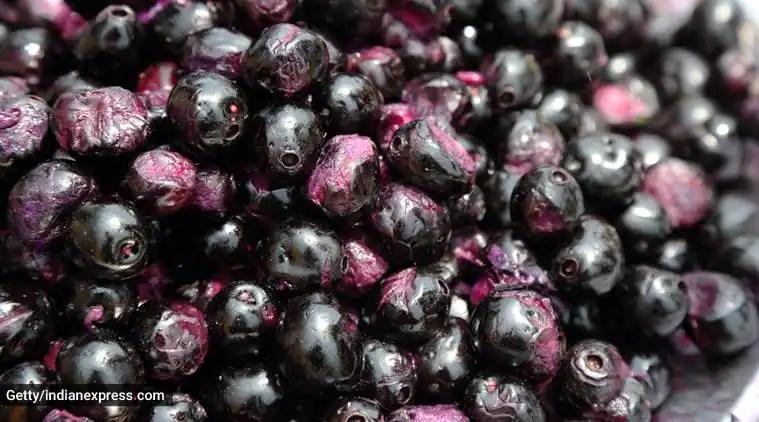 jamun, jamun fruits, jamun seeds, health benefits of jamun seeds, healthy eating, weight loss, indian express, indian express news