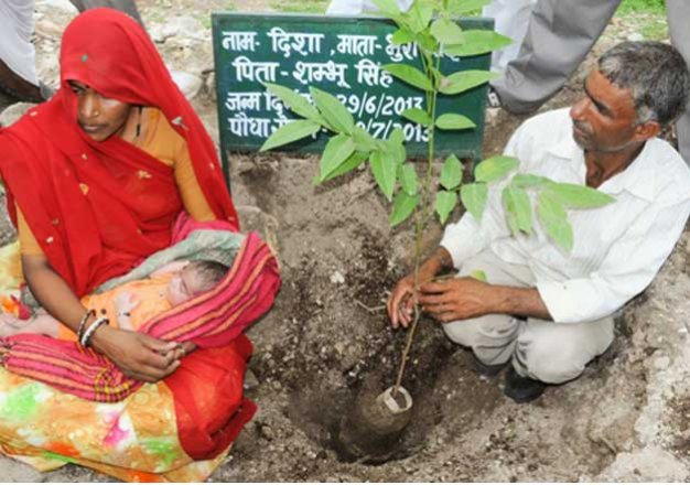Piplantri: A village in Rajsathan that plants 111 trees on birth of every girl child!