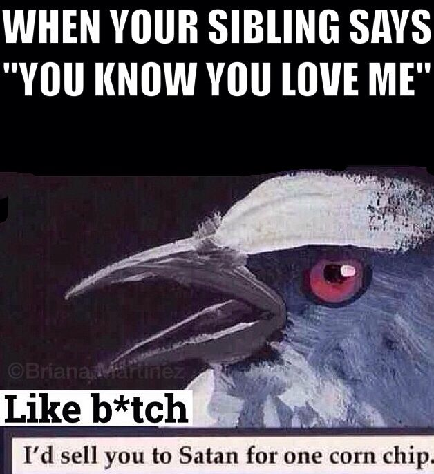 23 Things Every Younger Sibling On This Planet Will Relate To