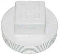 Hayward Plastic Pipe Plug (spx1053z1) - INYOPools.com