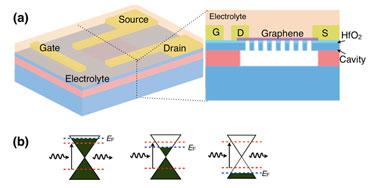 Graphene nanocavity