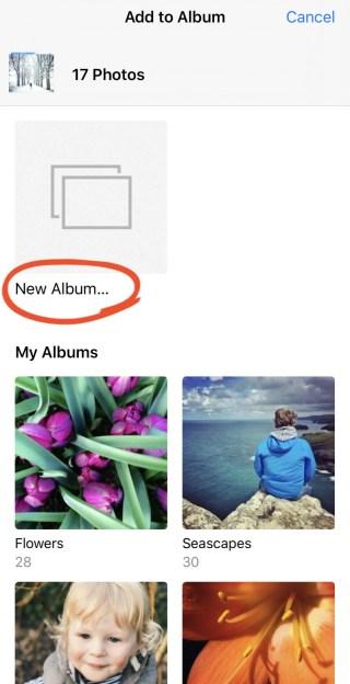 iPhone Photo Albums