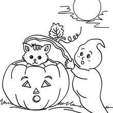 Halloween : Coloriages, Lire et apprendre, Activites