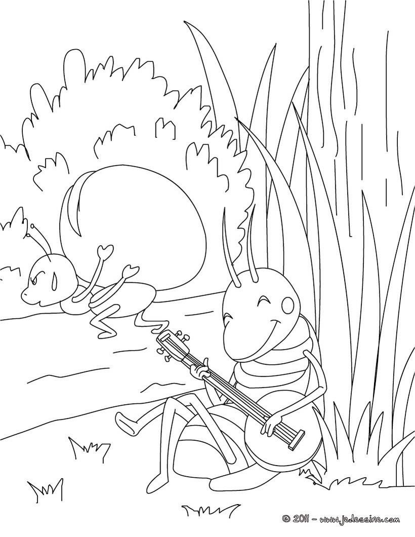 Comment colorier une cigale ? La réponse est sur Admicile.fr