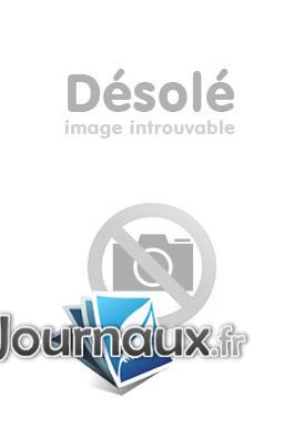 L'énigme De La Chambre D'ambre : l'énigme, chambre, d'ambre, Www.journaux.fr, Promo, L'Enigme, Chambre, D'Ambre