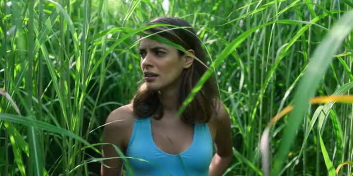 In the Tall Grass-2