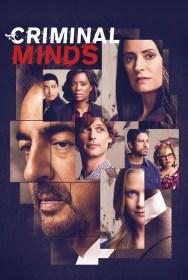 show Criminal Minds