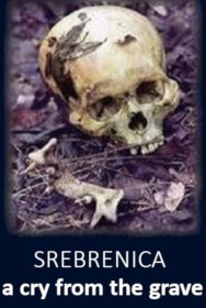 Srebrenica: A Cry from the Grave
