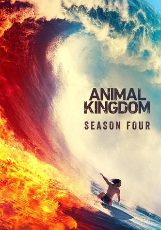 Animal Kingdom Saison 3 | Regarder Séries Streaming