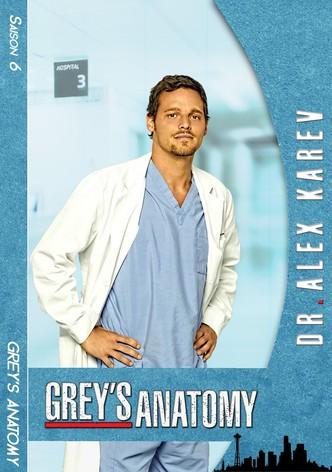 Grey's Anatomy Saison 14 Streaming Gratuit : grey's, anatomy, saison, streaming, gratuit, Regarder, Série, Grey's, Anatomy, Streaming