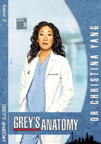 Grey's Anatomy Saison 16 Episode 1 Streaming : grey's, anatomy, saison, episode, streaming, Regarder, Série, Grey's, Anatomy, Streaming