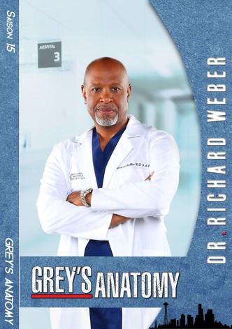 Grey's Anatomy Saison 15 Streaming Gratuit : grey's, anatomy, saison, streaming, gratuit, Regarder, Série, Grey's, Anatomy, Streaming