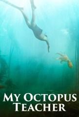 movie My Octopus Teacher (2020)