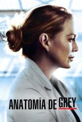 show Anatomía de Grey