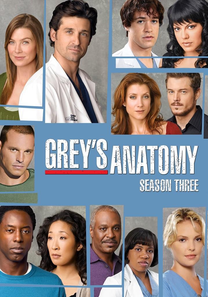 Grey's Anatomy Streaming Saison 3 : grey's, anatomy, streaming, saison, Grey's, Anatomy, Season, Watch, Episodes, Streaming, Online