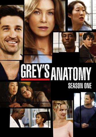 Grey's Anatomy Saison 16 Episode 1 Streaming : grey's, anatomy, saison, episode, streaming, Grey's, Anatomy, Streaming, Online