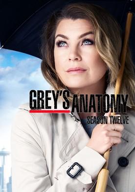 Streaming Grey's Anatomy Saison 15 Episode 12 : streaming, grey's, anatomy, saison, episode, Grey's, Anatomy, Season, Watch, Episodes, Streaming, Online