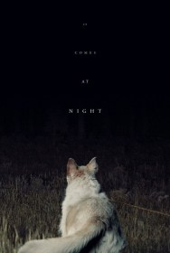 It Comes at Night