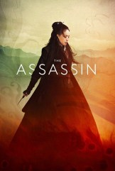 movie The Assassin (2015)