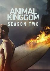 Watch Animal Kingdom - Season 4 quanlity HD 720 with english at...