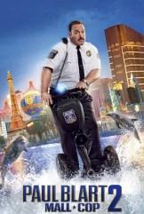 movie Paul Blart: Mall Cop 2 (2015)