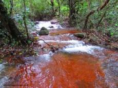 Kanayi Kanam-water flowing away from lake