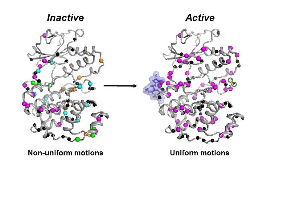 Targeting Protein Kinases for Anti-Cancer Drug Development